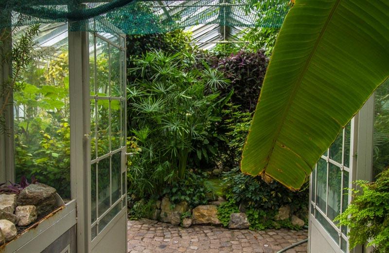 Botaniska trädgården Belgrad