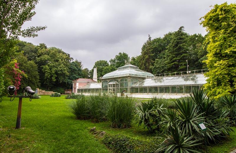 Belgrads botaniska trädgård
