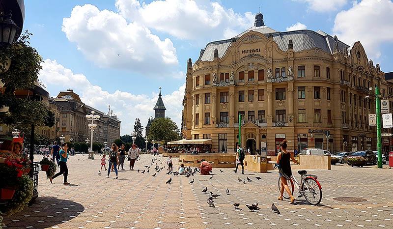 Piața Victoriei i Timisoara