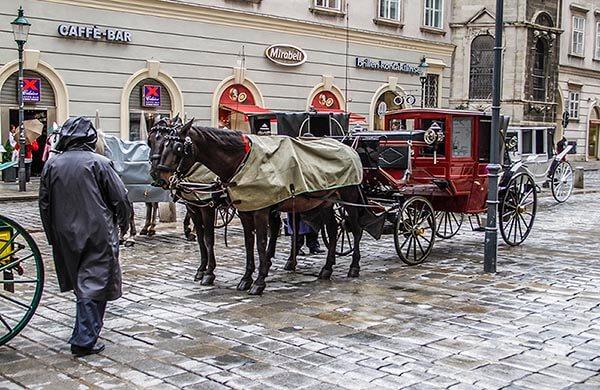 Hästdroskor i Wien